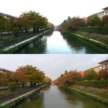 2013年の紅葉(2)