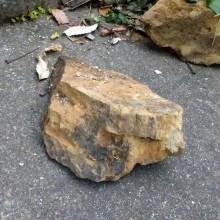 落石防止工事