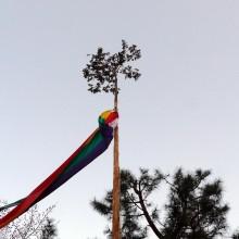 ヒノキの仏旗