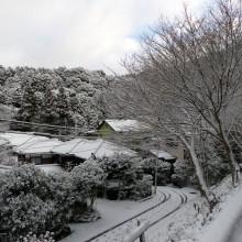 雪がつもっていました