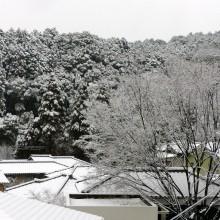 大雪になるという予報でしたが
