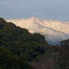 愛宕山の雪
