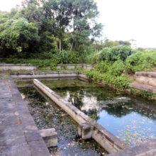 本願寺水道水源池
