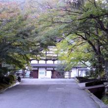 南禅寺カエデ