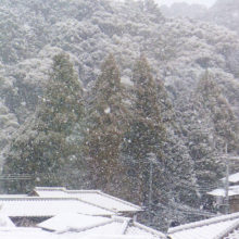 雪(九条山)