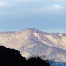 雪(愛宕山)