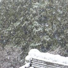 雪(9:42)