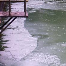凍った疎水
