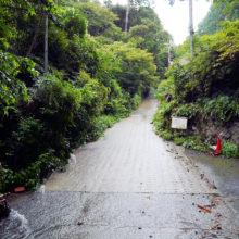 谷水の流れる道